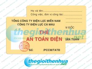 In thẻ an toàn điện cho công ty điện lực Cà Mau